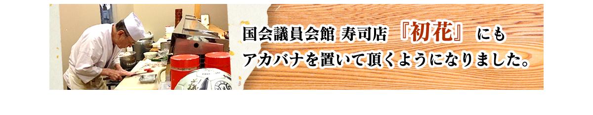 国会議員会館の寿司店「初花」にもアカバナを置いて頂くようになりました。
