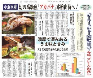 養殖新大陸⑨小浜水産幻の高級魚「アカバナ」本格出荷へ、濃厚で深みあるうま味と甘味
